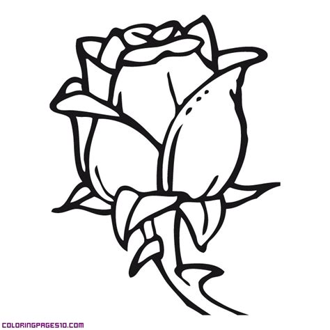 teacup puppies coloring pages free coloring pages of teacup chihuahua