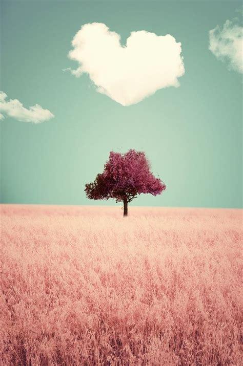 baixar filme pretty in pink 25 melhores ideias sobre papel de parede celular no