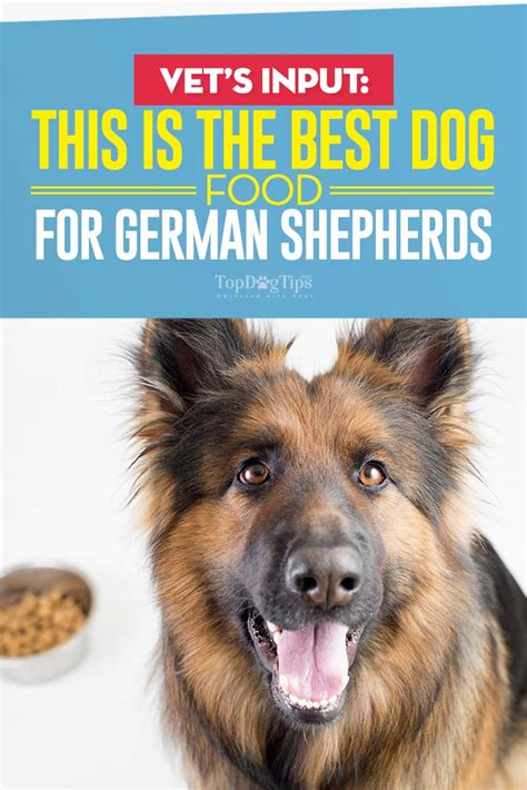 best food for german shepherds best food for german shepherds 8 vet recommended brands