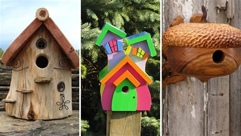 cute bird houses designs birdhouse archives architecture art designs