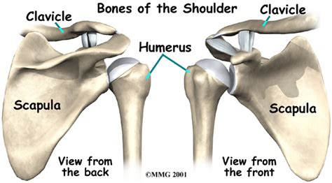 replacement shoulder information shoulder replacement causes symptoms treatment shoulder
