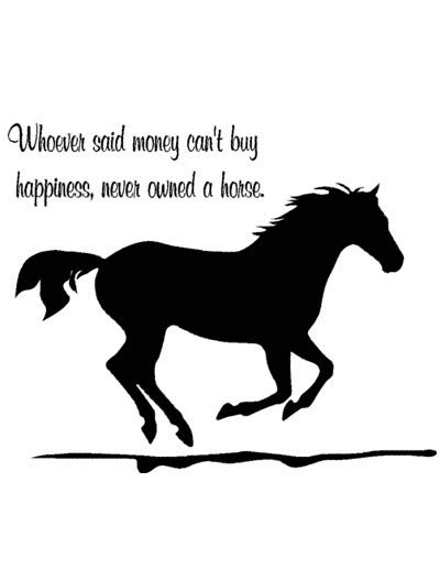 Twinkle Twinkle Little Star Wall Sticker horse quotes aluckyhorseshoe com