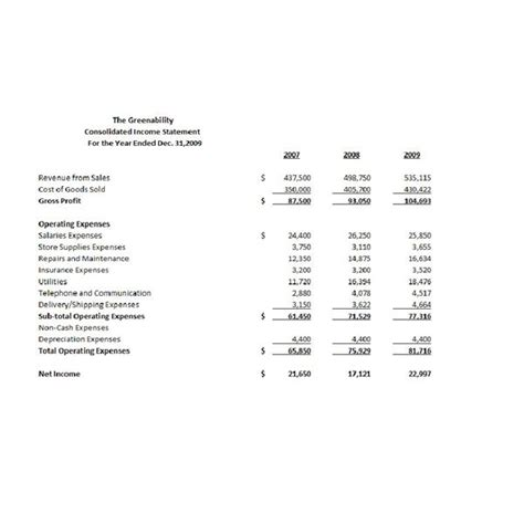 consolidated income statement template analysis of comparative and common size financial