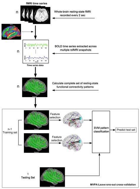 multivariate pattern classification analysis mvpa shown frontiers brief mental training reorganizes large scale
