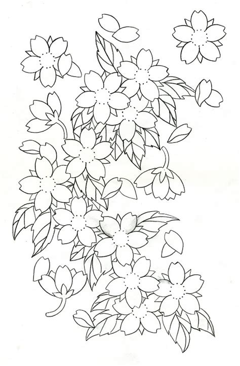 Cherry Blossom Branch Drawing Outline by Cherry Blossom Drawing Outline