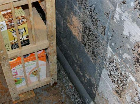 peeling waterproof paint in basement