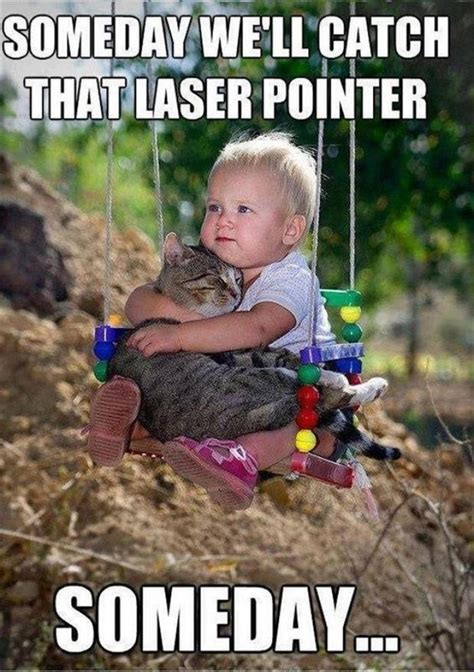 Child Memes - funny cats cute meme kids laser pointer
