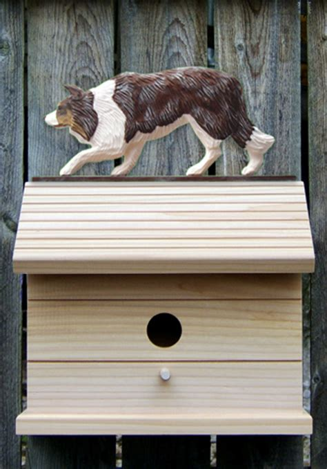 painted dog houses border collie hand painted dog bird house red merle