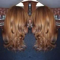 level 6 hair color level 5 caramel hair color sallys images brown hairs
