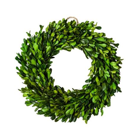 preserved boxwood leaves wreath green 11 quot smi target