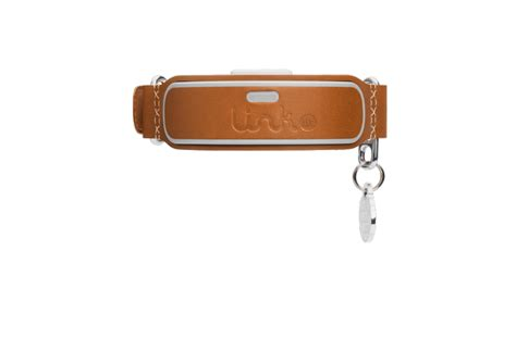 link akc smart collar the link akc smart collar will wow you with all its tricks vanillapup