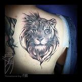 Half Lion Half Tiger Art | 960 x 960 jpeg 524kB