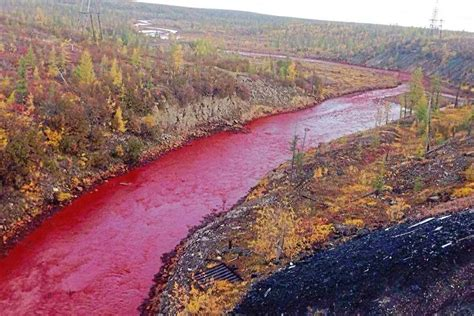 What caused Red River in Russia?   Daily Democrat News