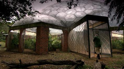 bug house bughouse prehistoric park wiki