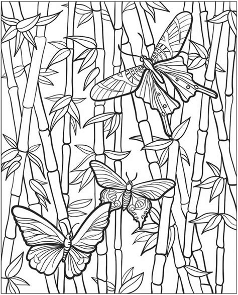 bamboo coloring pages