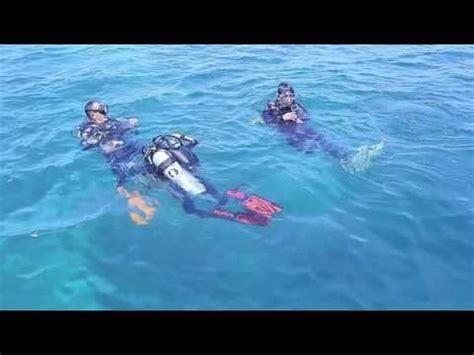 film dokumenter bawah laut surga bawah laut pulau muna film dive site dkp muna youtube