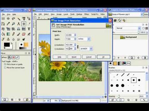 gimp tutorial in tamil image resolution