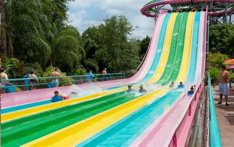 park orlando the big 5 top five reasons why aquatica is orlando s 1 water park and why you