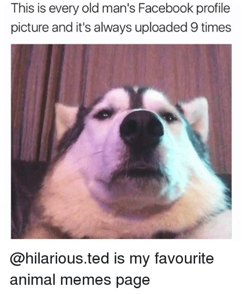 Hilarious Meme Pics - this is every old man s facebook profile picture and it s