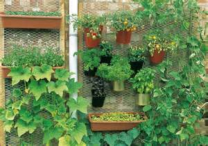 Urban Organic Gardener - urban gardening creating space in the city