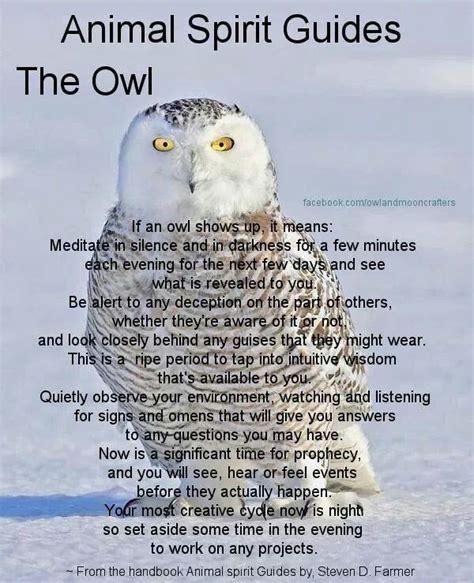Biblical Symbolism Of Owls Myideasbedroom Com Owl Meanings