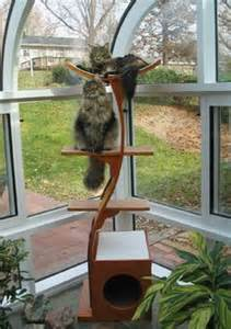 The Lotus Cat Tree 1000 Images About Cat Trees On Cat Trees Cat