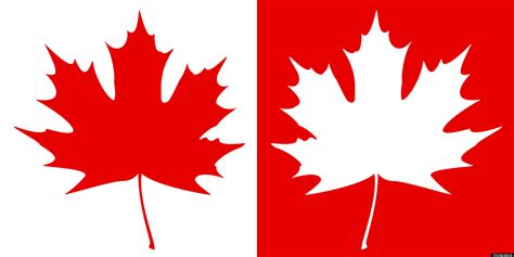 file canadian maple leaf jpg canada clipart canadian maple leaf pencil and in color