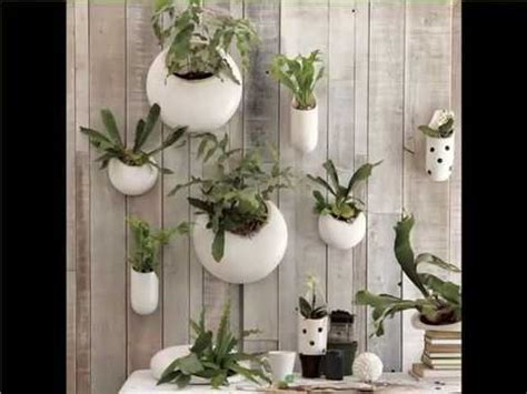 indoor wall hanging plants indoor house  office plants