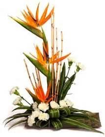Bird Of Paradise Flower Arrangement Vase Flower Arrangement Ideas On Pinterest Bird Of Paradise