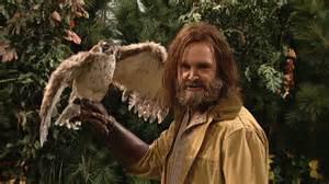 Rowhou Com a falconer with full control of 100 bald eagles vs 40