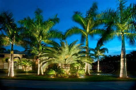 lights orange county landscape lighting orange county ca image mag