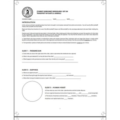 Reproducible Student Worksheet by Transport In Plants And Animals Grade 1 To 12
