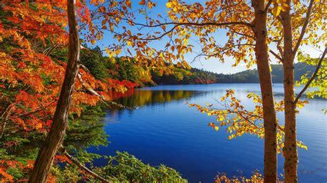 fall lake view hd wallpaper wallpaper studio  tens