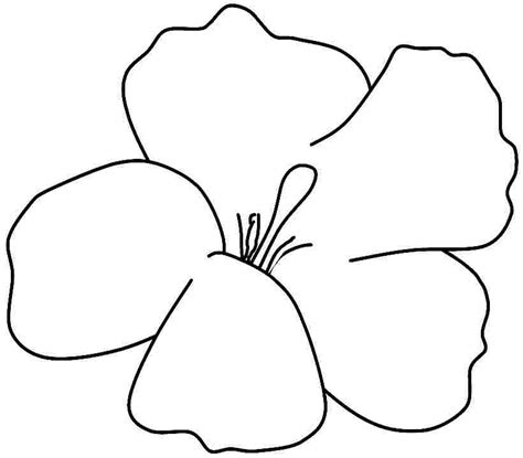Free Coloring Pages Of Hibiscus Flowers Az Coloring Pages