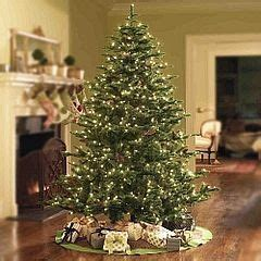 how to keep your tree alive 1000 images about trees decorated on