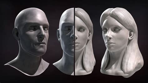 head sculpting tutorial in zbrush sculpting male and female faces in zbrush pluralsight