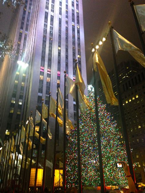 when do they light the nyc tree a new york i cat