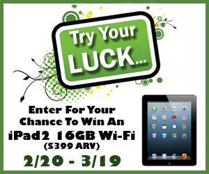 win an ipad or free gogo wi fi on your next american february ipad2 giveaway geminired creations