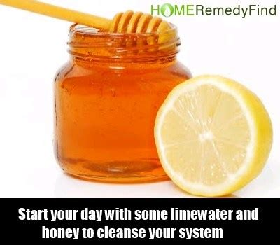 Best Way To Detox Your Home Cures by 28 Ways To Detox The Diy Find Home Remedies