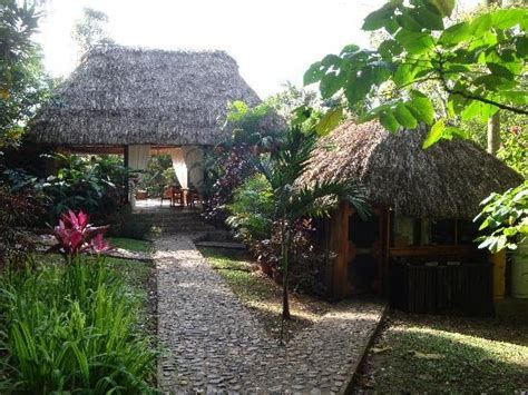 table rock lodge belize 266 best images about belize baby on caye