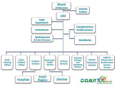 board of directors organizational chart template the organizational structure of clalit health services