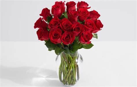 arti bunga mawar merah sebagai kado valentine outerbloom