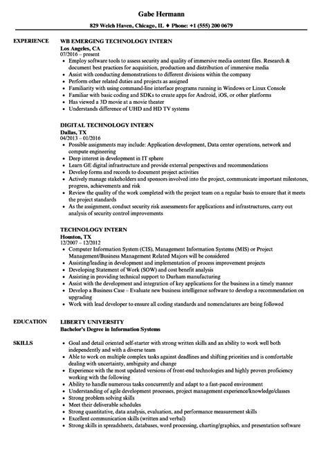 Information Technology Intern Resume
