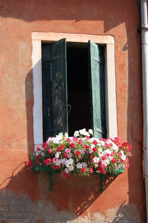 balcony window boxes 17 best images about balcony flowers on window