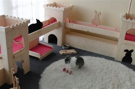 dait interno it bunny paradise foreverpetite