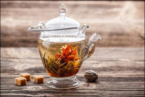Teh Bunga teh bunga mekar china khasiat dan keindahan dalam