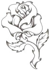 t drawing rose clipart best