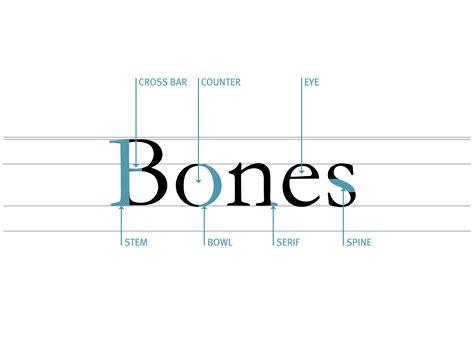 typography counter anatomy of type