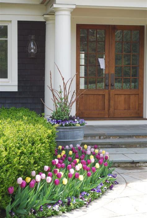 mesmerizing tulip flower beds   fascinate