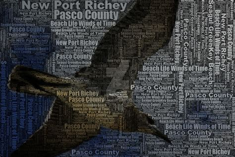 Pasco County Search Pasco County Typo Fx 3 By Ovahfxdigitalrealm On Deviantart